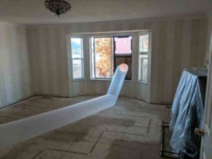 flood damage repair - mold prevention